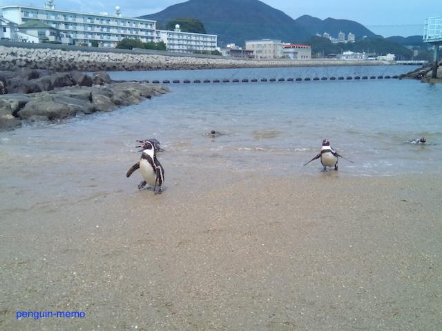 pen-beach1.jpg