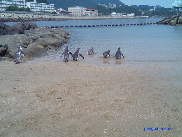 pen-beach6.jpg