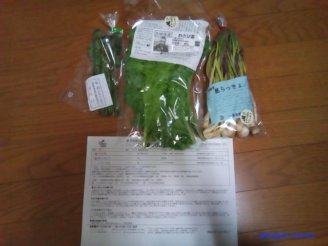 vegetableMay17.jpg